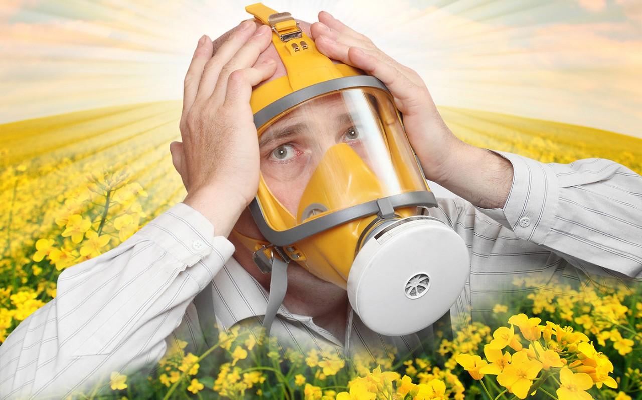 Правда и мифы об аллергии