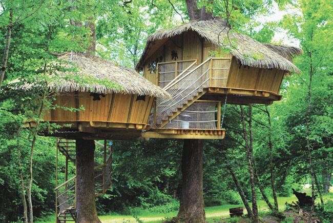 Отели на деревьях во Франции (14 фото)
