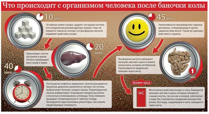 Coca Cola под микроскопом: факты, которые поставят точку в вопросе пить или не пить coca-cola, пить или не пить, факты