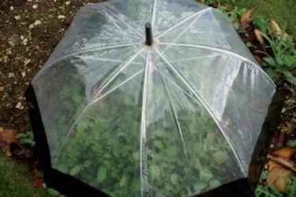Из старых зонтиков