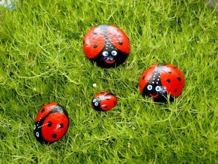 «Живые» камни — необычный элемент декора для сада