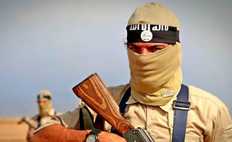 Военная обстановка в Сирии: ИГИЛ потерпело крах и переходит к партизанской войне
