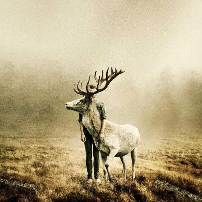 Спасенные животные и их спасители: фотопроект Martin Stranka