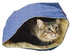 Налог на апартаменты – «кот в мешке»