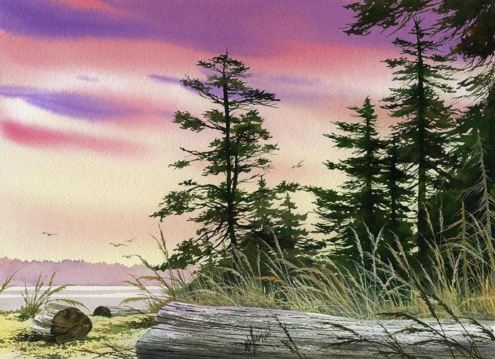 Сон о Севере... Художник Джеймс Уильямсон