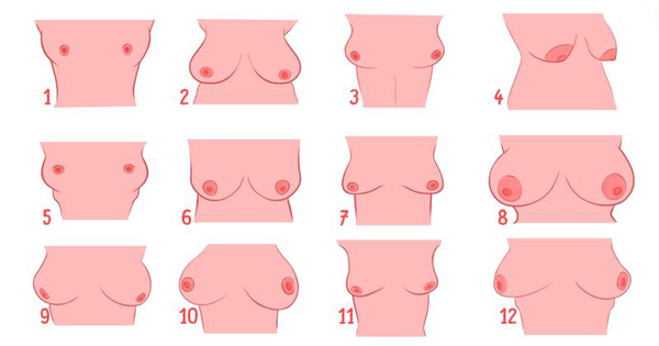 Какие у девушки грудь - такое и будет с ней жизни! Какой номер у вашего?