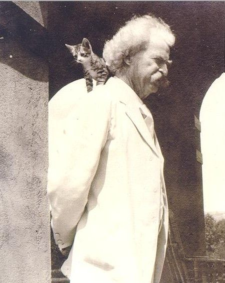 Замечательные фото котиков, у которых были свои писатели и поэты