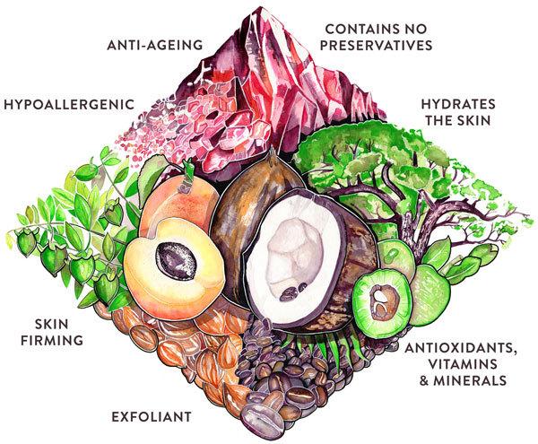 Кормите тело правильно! КАК то, что вы едите, влияет на состояние вашего лица
