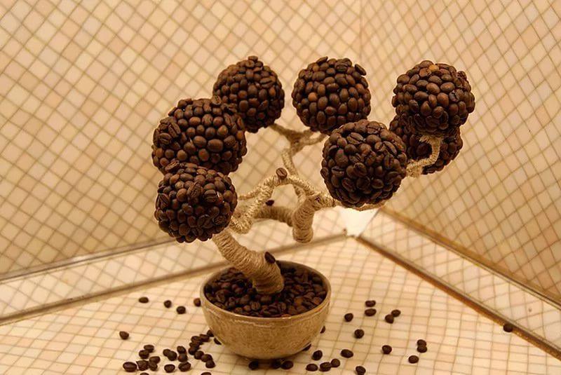 Деревья из кофе своими руками фото