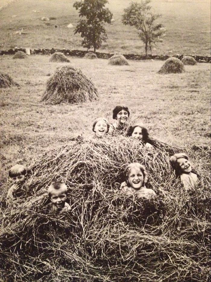 28. В стоге сена, Нью-Йорк, начало 20-го века детство, прошлое, фотография