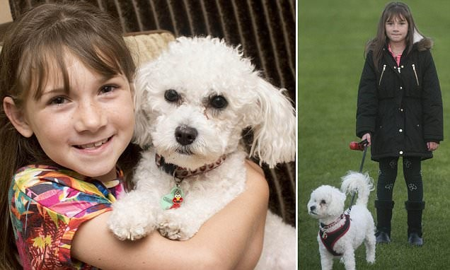 Собака предугадывает приступы маленькой хозяйки, больной эпилепсией
