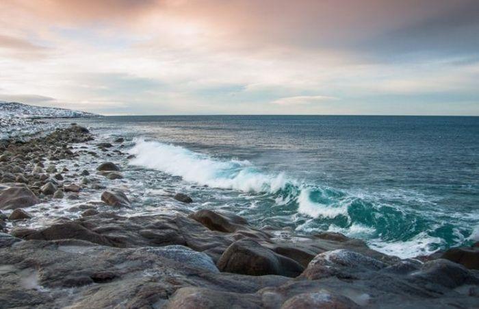 Россия закрыла Баренцево море, или Вторая тюленья война...