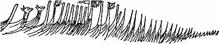 нос корабля рисунки