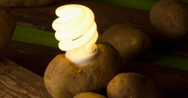 potatolight