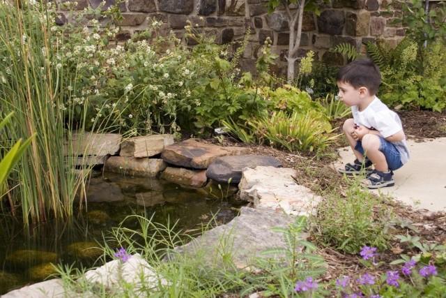 Ребёнок возле незащищённого пруда на участке
