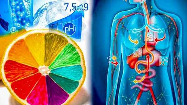 Как щелочная вода действует на наш организм и творит чудеса для общего здоровья