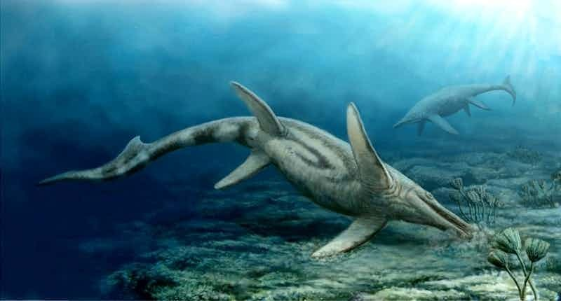 5. Шастазавр гигант, животные, планета