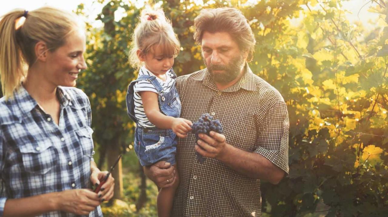 Дети веганов отстают в умственном развитии, – ученые. У вас нет детей - внуков веганов?