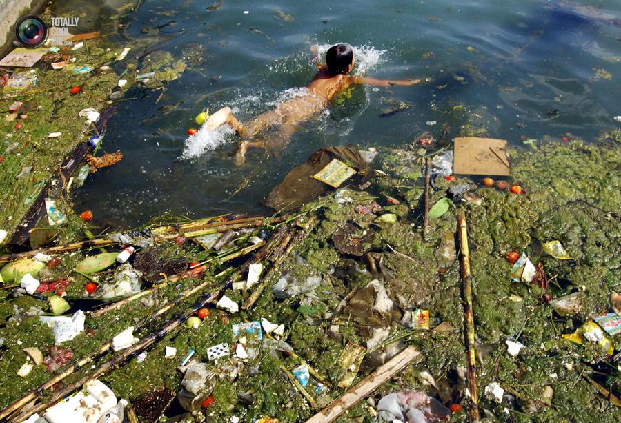Китайские экологи бьют тревогу