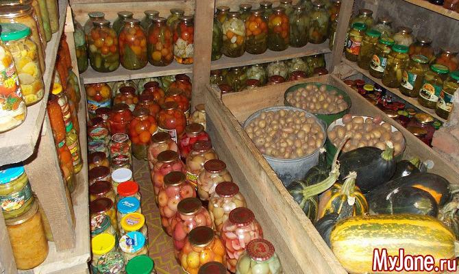 Дачный урожай: как сохранить подольше?