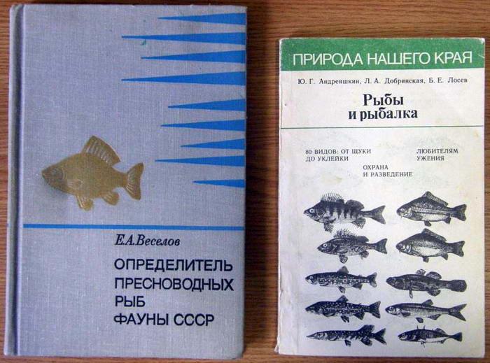 как писать книгу о рыбалке
