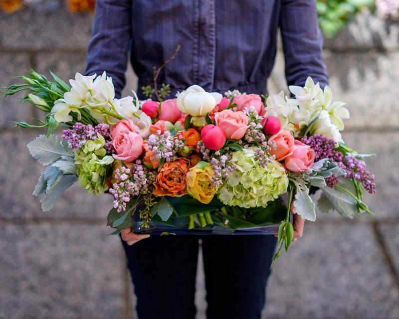 Чудодейственное средство для роста и роскошного цветения ваших растений
