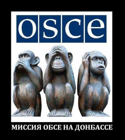 Донецк – дно укросми и «беззащитное» ОБСЕ