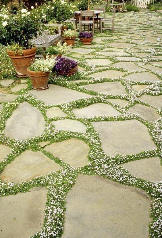 20 фантастических идей садовых дорожек
