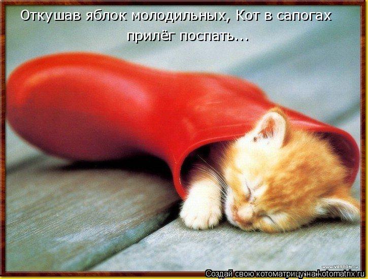 Котоматрица - Откушав яблок молодильных, Кот в сапогах прилёг поспать...