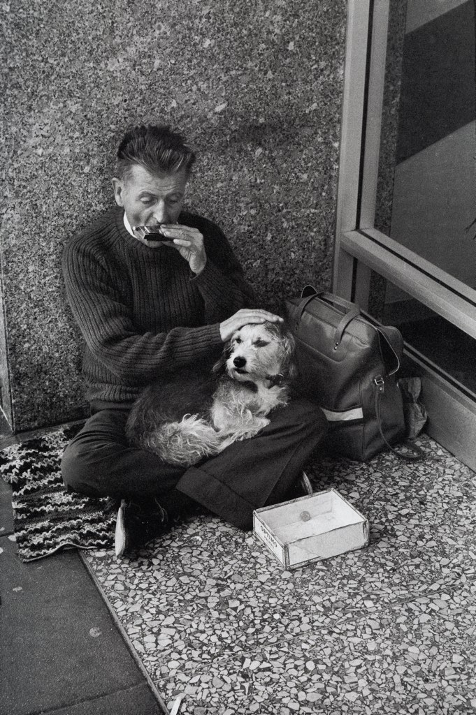 Люди и собаки. Ретро фотогра…