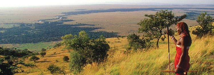 Africa,kenya,masai mara