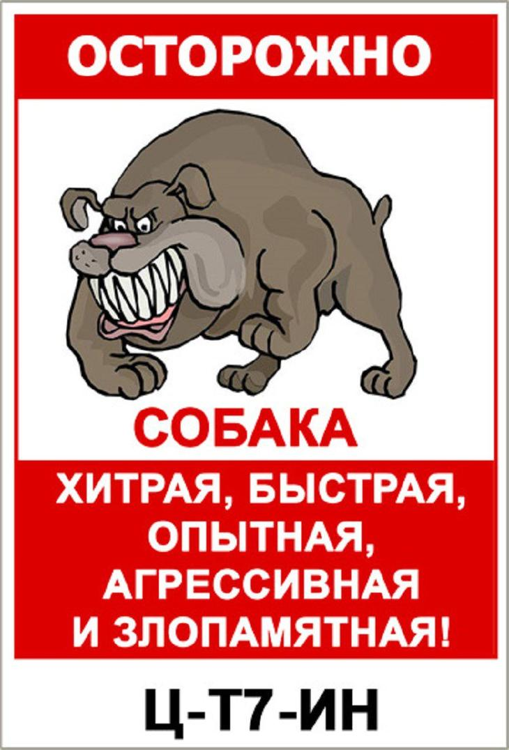 Табличка злая собака своими руками