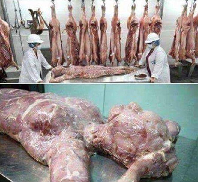 Китайская тушенка из человечины, которая продается в супермаркетах Африки. Они там вообще обалдели?!