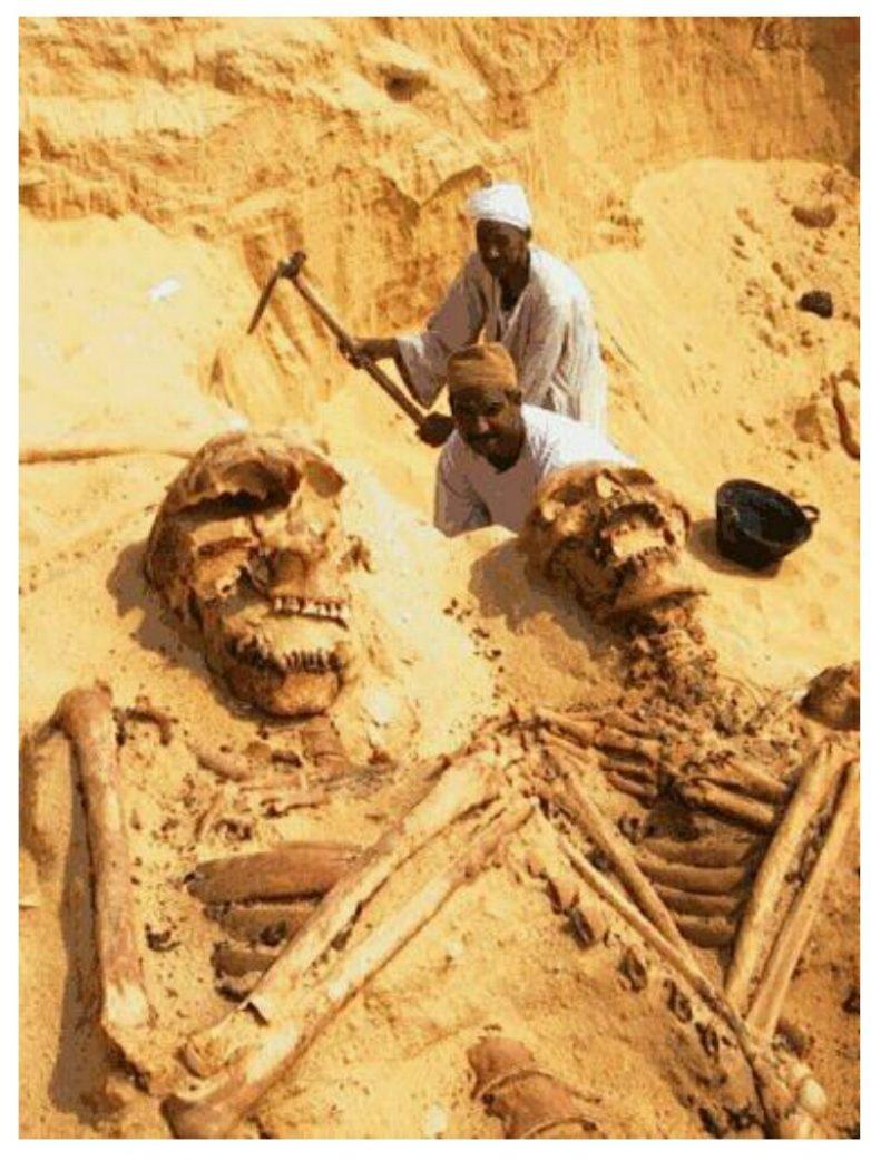Так кто же на самом деле строил пирамиды в Египте?