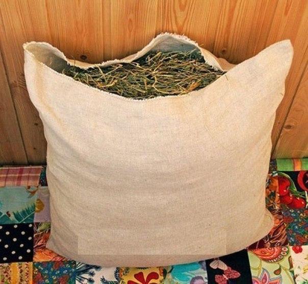Матрасы и подушки из лечебных трав своими руками