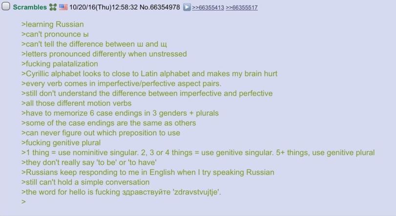 Мысли иностранного студента во время обучения великого и могучего русского языка