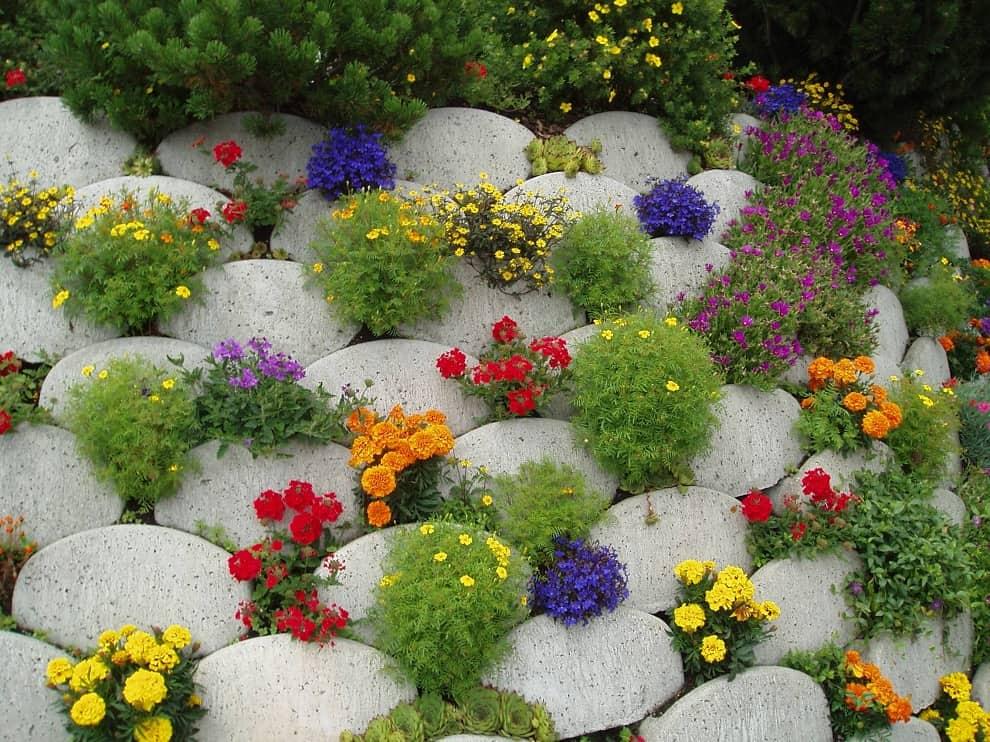 Альпийская горка, созданная в виде небольшой горки из камней будет хорошо смотреться в тандеме с однолетними растениями