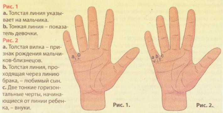определенной по какой руке смотрят линию жизни у мужчин мембранный термокостюм