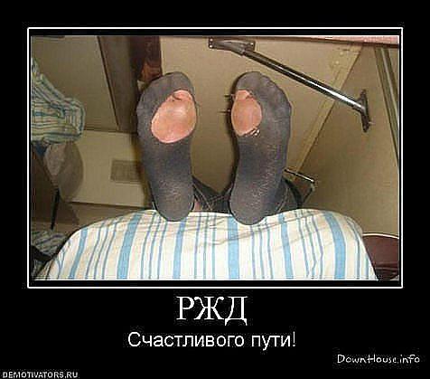 смешные фото