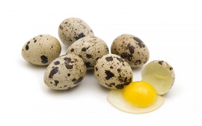 Уникальные свойства перепелиных яиц