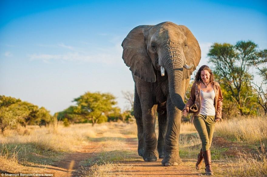 Бесстрашная фотограф из ЮАР Шеннон Бренсон