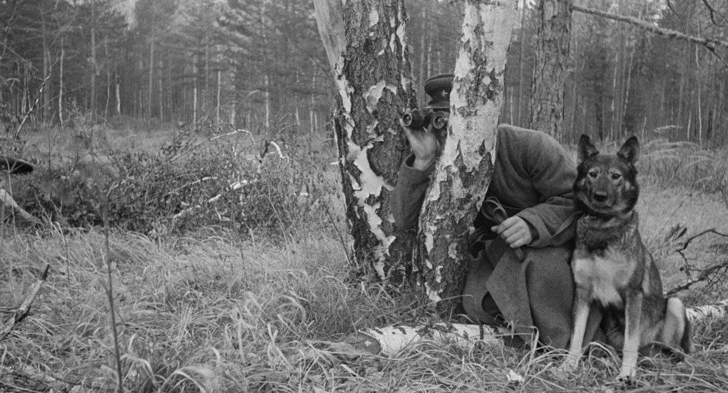 Мифы о начале Великой Отечественной и о Церкви в годы войны