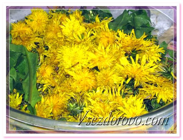 Выкладываем промытые листья и цветы в кастрюлю