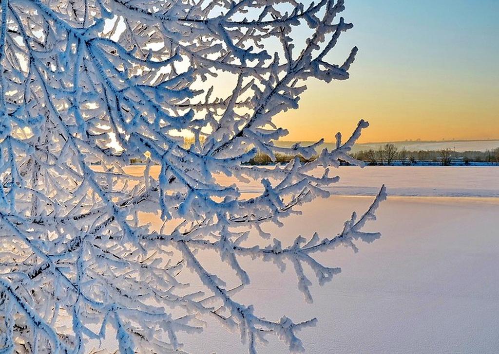 Вот и пришла волшебная зима...