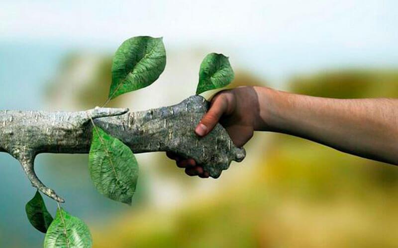 13 способов стать эко-френдли исделать планету чище