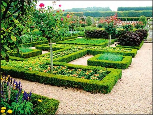 Французский огород – что же …