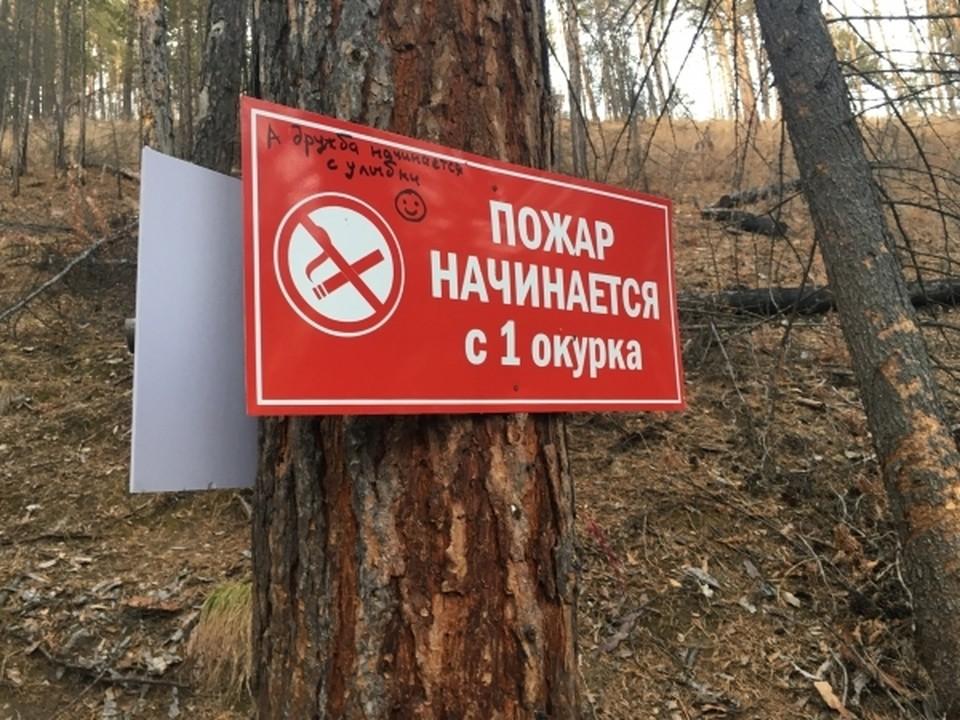 В России подготавливают новые требования к сигаретам