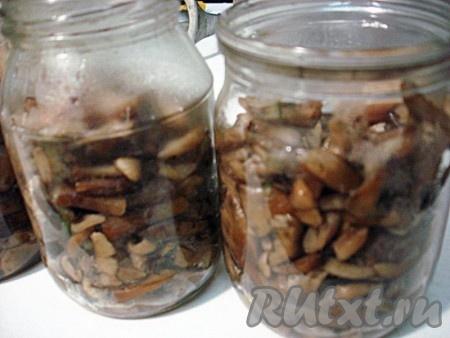 Опята раскладываем в стерилизованные баночки. Доливаем солёной водой, в которой варились грибы. Вода должна полностью покрыть грибы и дойти до горлышка банки. Грибы в банках не должны быть уложены плотно. Если грибы уложены плотно, банка может взорваться.