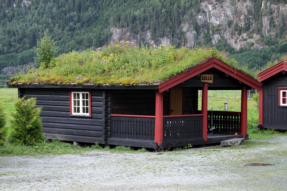 Живые крыши домов в Норвегии.