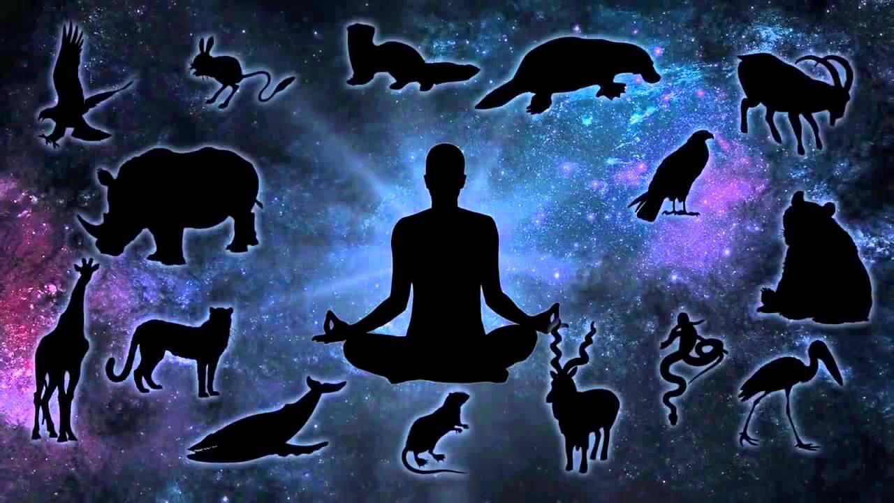Душа (сознание). Природа души